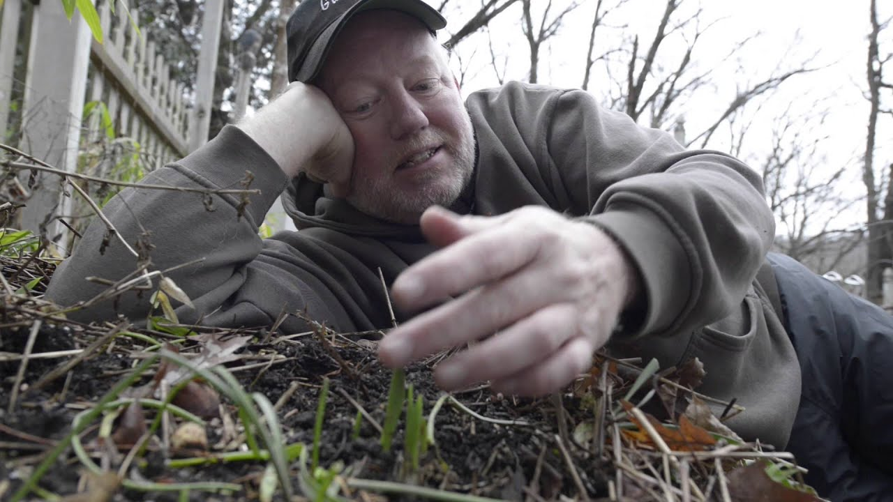 in the garden with doug oster what to do with plants sprouting in