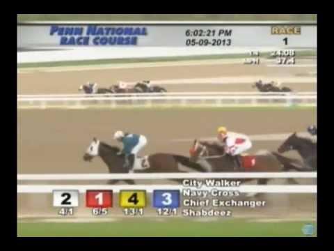 Navy Cross - 2013 Penn National Maiden Race - Third Place Finish