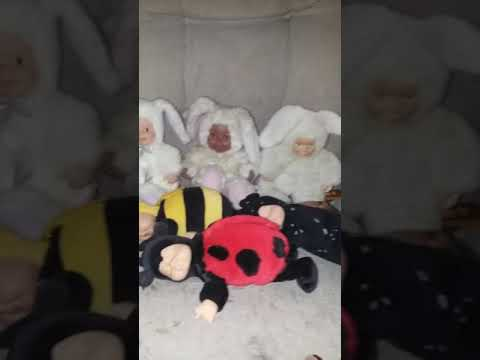 Anne Geddes Babies