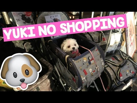 YUKI NO SHOPPING PARA PET