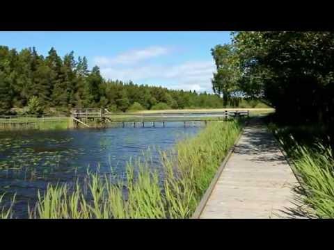 Yttre Bodane naturreservat, Åmål Dalsland