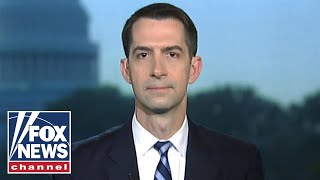 Sen. Cotton: House Democrats going the extra mile to protect Biden