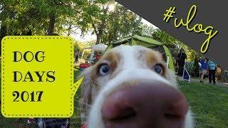 DogDays 2017 - Festival psích športov | vlog DOGDAYS 検索動画 6