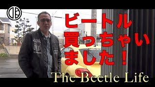 [The Beetle Life] The Beetle Review (ザ・ビートル買っちゃった!)