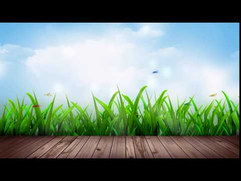 Free HD Wedding background, Free download motion background, Free Video animation NATURE 014 thumbnail