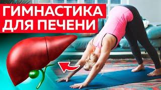 Гимнастика для лечения печени