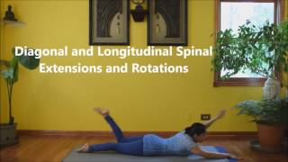 Prone Position Pilates - Full Class with Vidya Nahar to Firm up the Back
