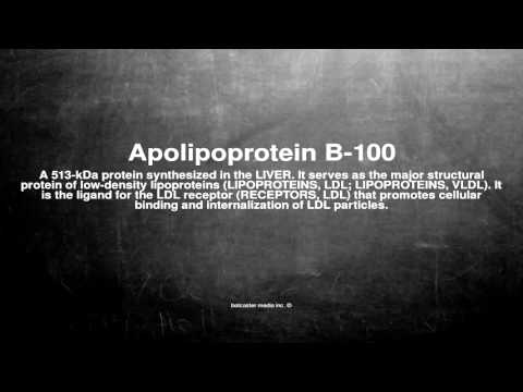 Medical vocabulary: What does Apolipoprotein B-100 mean