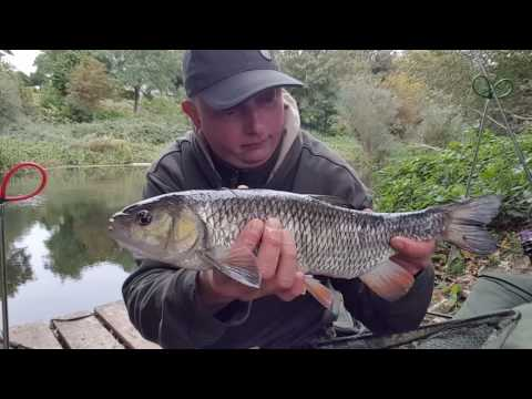 Barbel Fishing River Avon