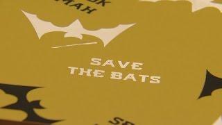 'U' العلماء إنشاء 'الخفافيش المنازل' إعادة العلامة التجارية الحيوانات المهددة بالانقراض