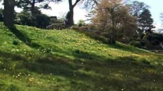 RHS Wisley gardens in spring