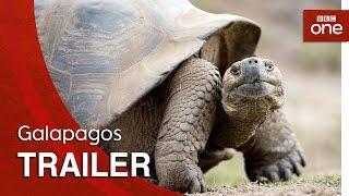 Galapagos: Trailer - BBC One