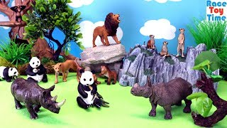 Toy Wild Animals and Safari  - Learn Animal Names For Kids