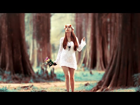 🎵 Ambient & HipHop *Music Free Copyright Use* ✔️  *Music to Relax / Study*