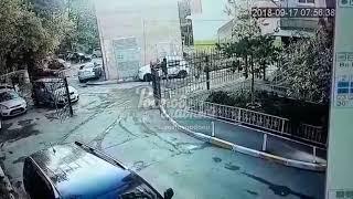 На Евдокимова собаки напали на женщину 17 9 2018 Ростов на Дону Главный
