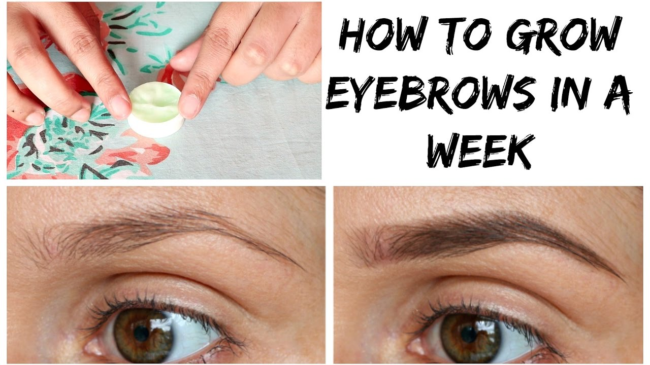 How To Grow Your Eyebrow In A Week Naturally Very Effective