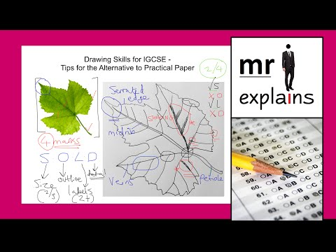 mr i explains: Drawing Skills for IGCSE - Tips for the Alternative to Practical Paper