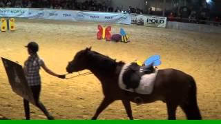 Huzulenshow Apropos Pferd 2015