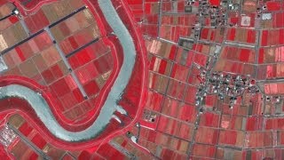 Google Sniffing Around $1 Billion Deal To Buy Skybox Imaging