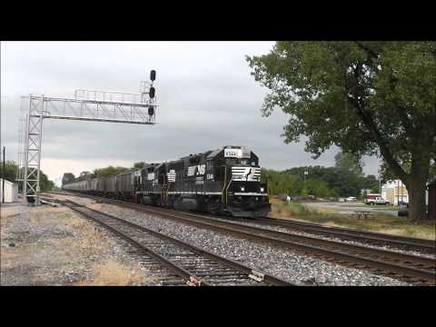 Trains at Tolono and Champaign, Illinois, 13.08.12: NS, CN & Amtrak