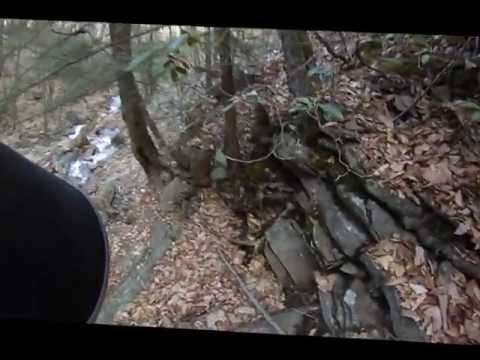 Dutchmans Run, McIntyre Wild Area, Loyalsock State Forest