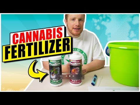 How to Give Cannabis Fertilizer 🌲  EXACTLY the RIGHT DOSE