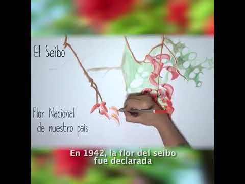 Locución Pilar SS/ Pastillita para redes- Plantas nativas: El Seibo