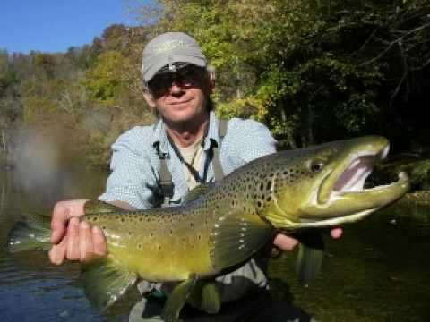 Trout fest may 2009 watauga doe south holston rivers for Buy tennessee fishing license