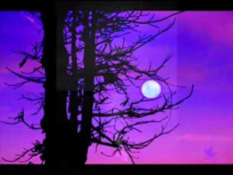 Senja yang Kau Tunggu - SaeSwara