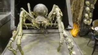 crate spider professional halloween haunted house animatronic prop