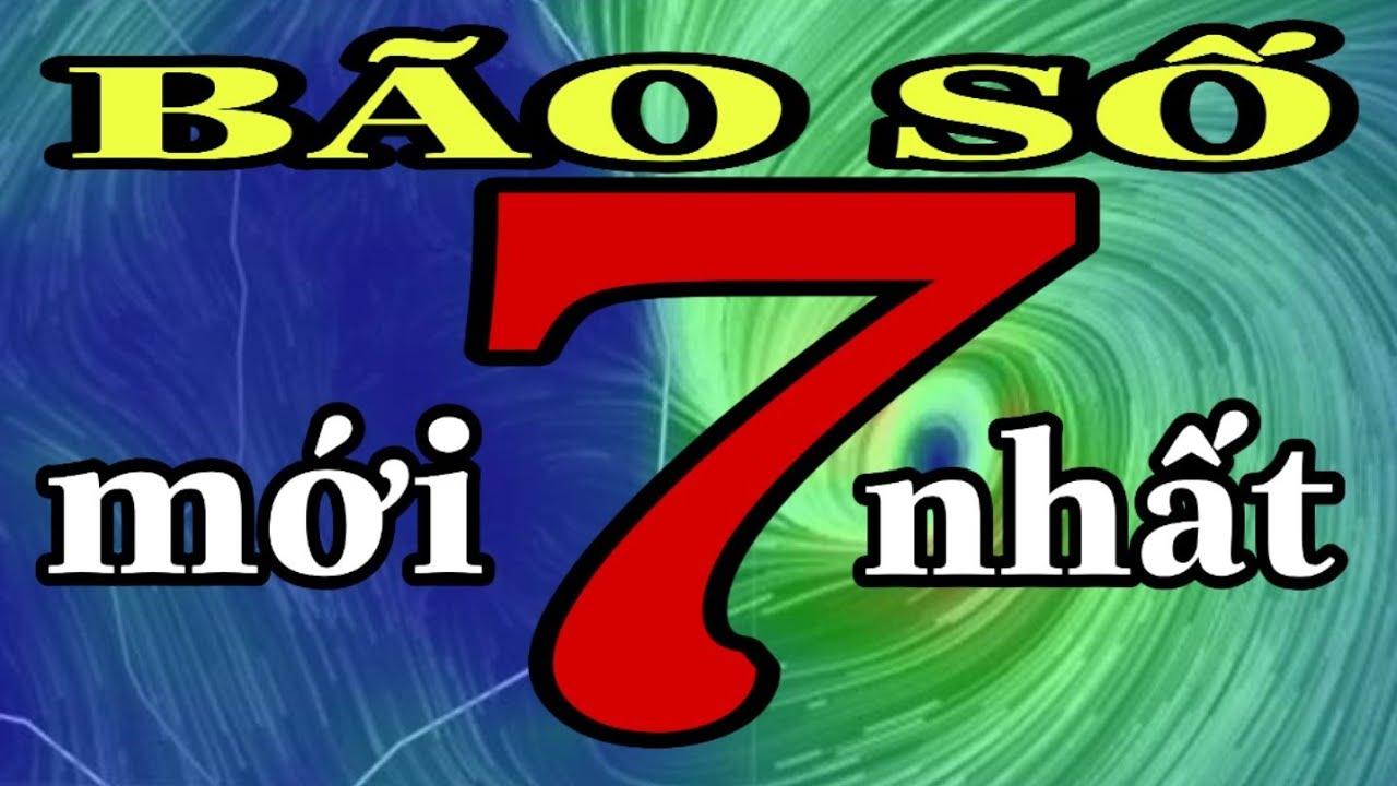 TIN KHẨN CẤP 12/11 - BÃO SỐ 7 ĐANG HÌNH THÀNH || DỰ BÁO BÃO.