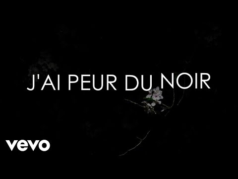 Aldebert - J'ai peur du noir [Video Lyrics]