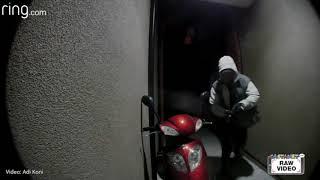 Scooter thief strikes