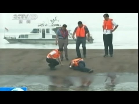 Chinese Ferry Overturns on Yangtze River, Hundreds Missing