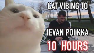 Cat Vibing To Ievan Polkka 10 Hours