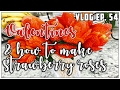 COSTCO, VALENTINES, & HOW TO MAKE STRAWBERRY ROSES - VLOG EP. 54
