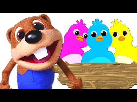 here-comes-my-baby-+-more-|-toddler-tv-show,-abc-learning-songs-by-busy-beavers