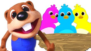 Here Comes My Baby More Toddler TV Show ABC Learning Songs By Busy Beavers