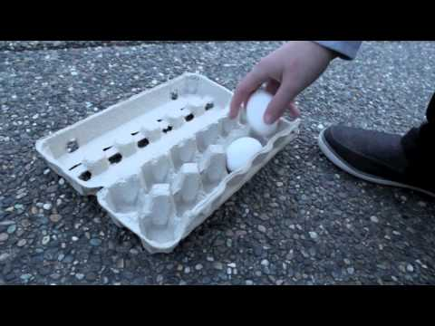 HOW TO EGG A HOUSE!!!