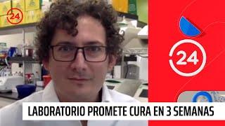 Laboratorio Promete Cura En Tres Semanas Para El Coronavirus