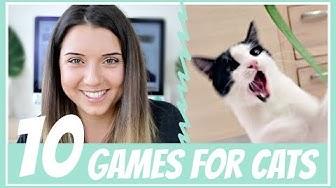 10 котешки игри за (не)мързеливи стопани