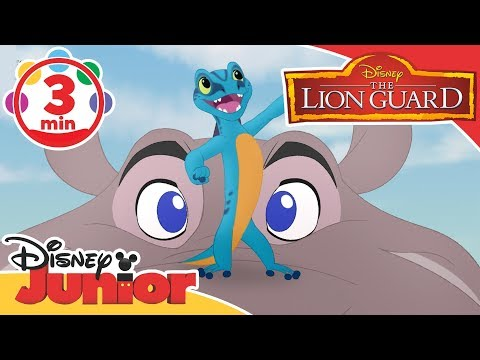 The Lion Guard   Give a Little Guy a Chance Song 🎶   Disney Junior UK