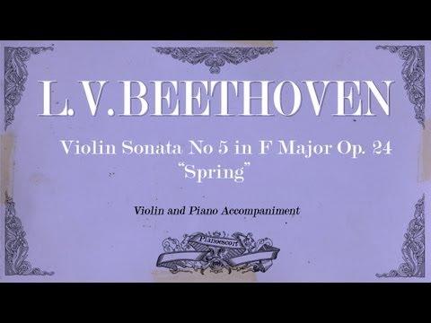 "L.V.Beethoven - Violin Sonata in F Major No 5 Op.24 ""Spring"" - 1 mov Allegro - Piano accompaniment"