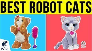 10 Best Robot Cats 2019