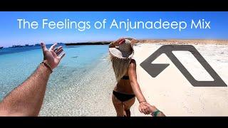 The Feelings of Anjunadeep Mix