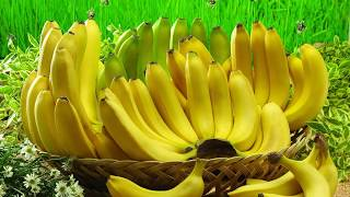 Be a king with Banana and Egg | Why Banana is good for men