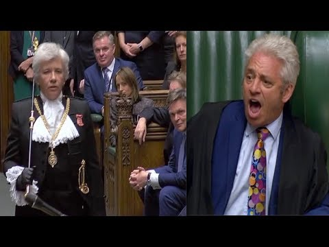 BREXIT CHAOTIC SCENES: Scuffle Breaks Out As Remainers Attempt To Block Proroguing Of Parliament