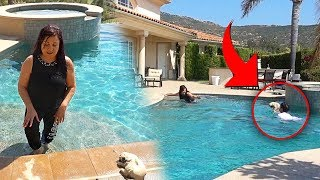 Download MY DOG DROWNING PRANK!! (MOM FREAKS OUT) | FaZe Rug Mp3 and Videos