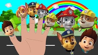 Paw Patrol Finger Family Nursery Rhymes Song Learn Colours for Children