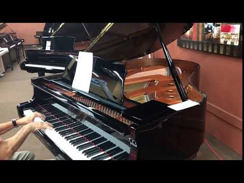 Piano Store Fort Lauderdale # 954 457 4664